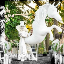 CB unicorns wedding